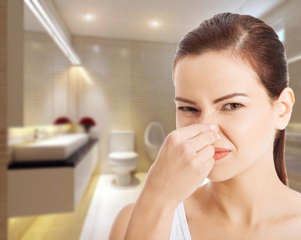 Nguyên nhân khiến nhà vệ sinh bốc mùi